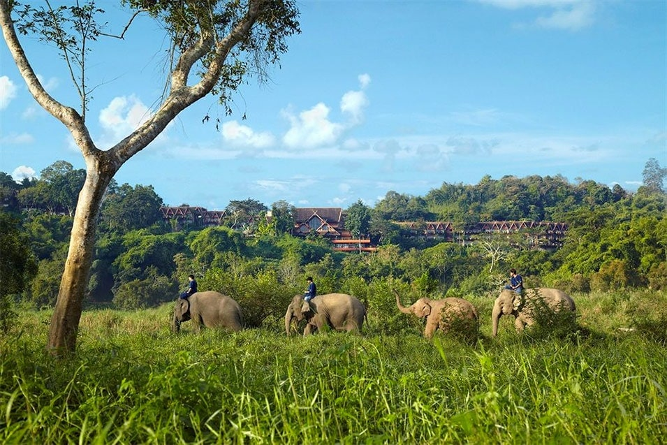 anantara-golden-triangle-elephant-camp-resort-chiang-rai