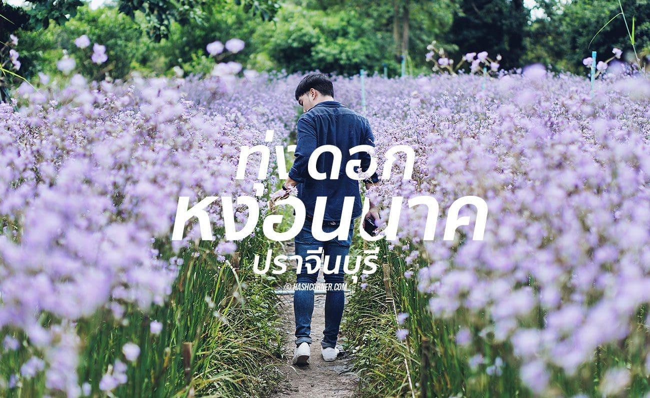 nghon-nak-flower-prachinburi