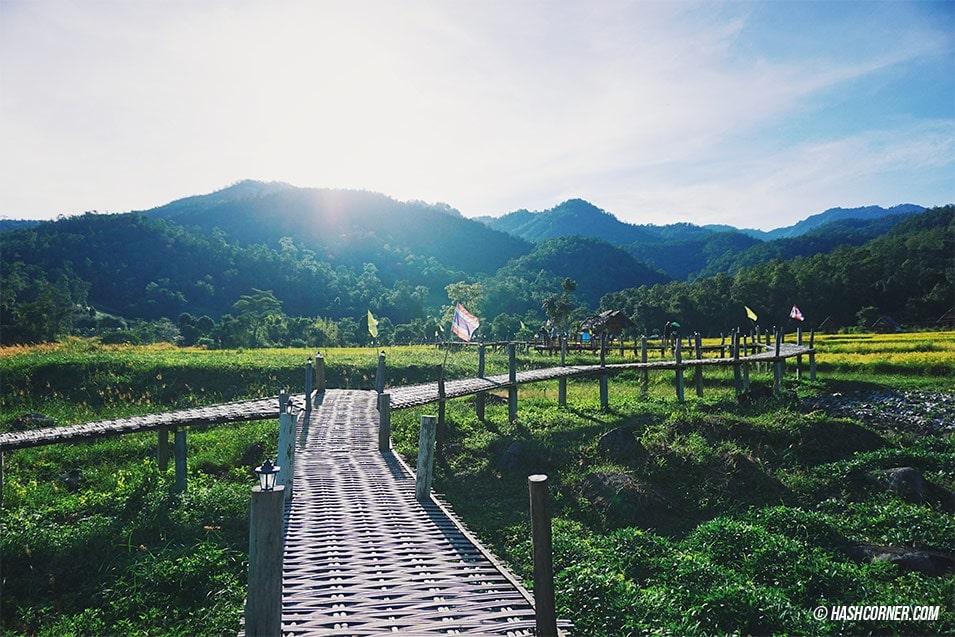 best-of-pai-bamboo-bridge-05