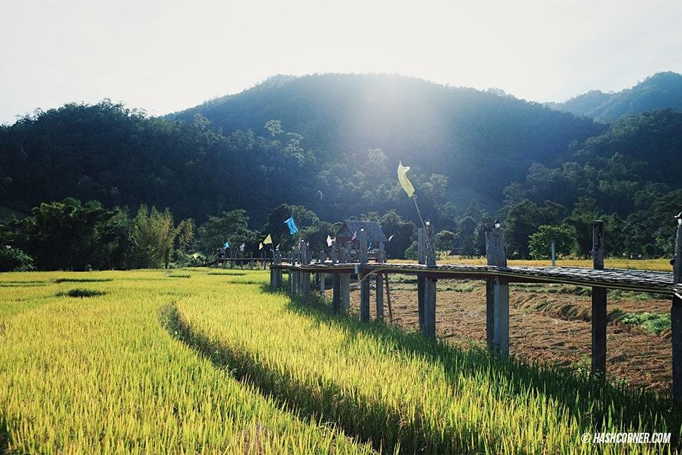 best-of-pai-bamboo-bridge-08