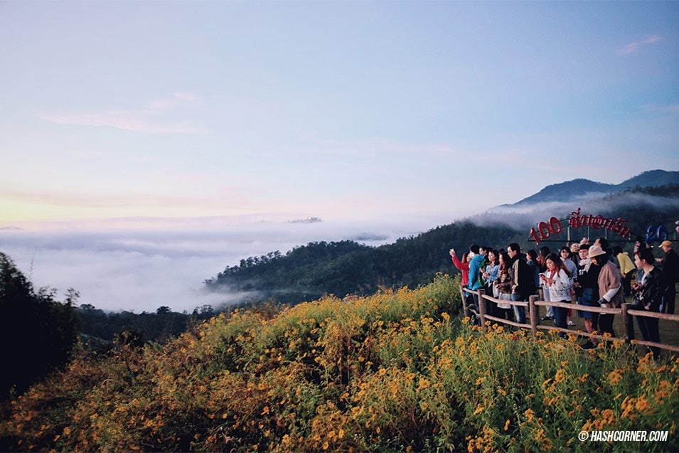best-of-pai-yunlai-viewpoint-13