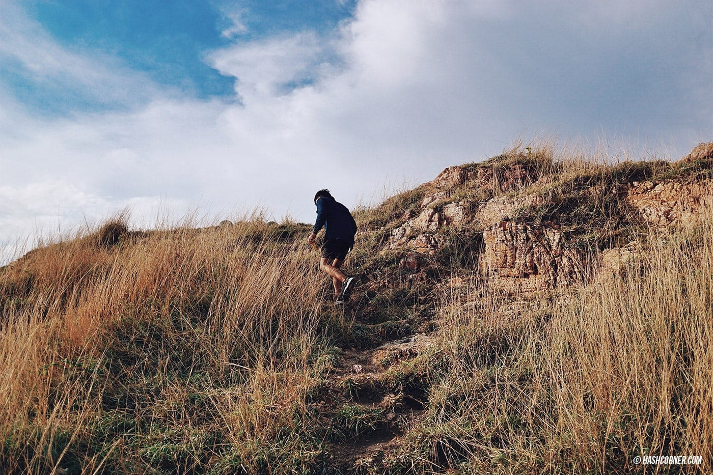 รีวิว เขาแหลมหญ้า (ระยอง) : เดินเทรลเลียบทะเล ชมธรรมชาติ