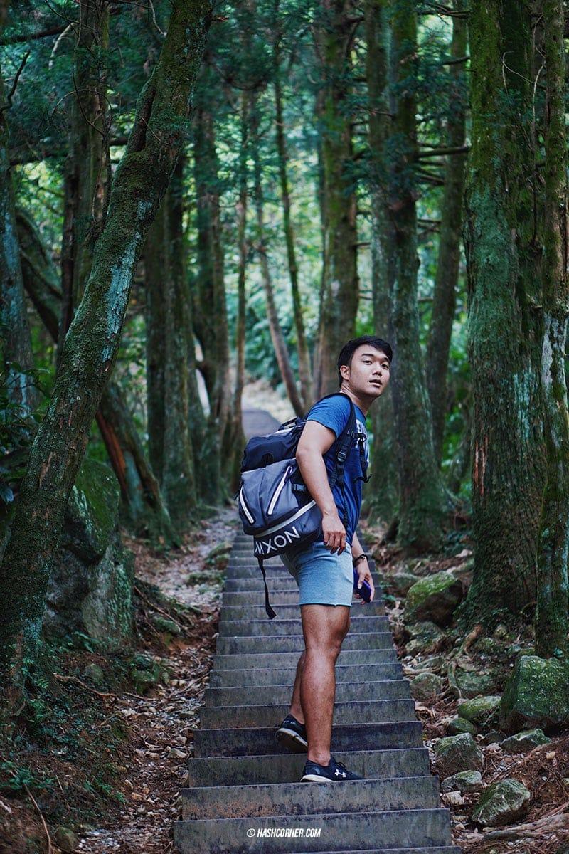 รีวิว หยางหมิงซาน (Yangmingshan) เที่ยวไต้หวัน ทั่วประเทศ!