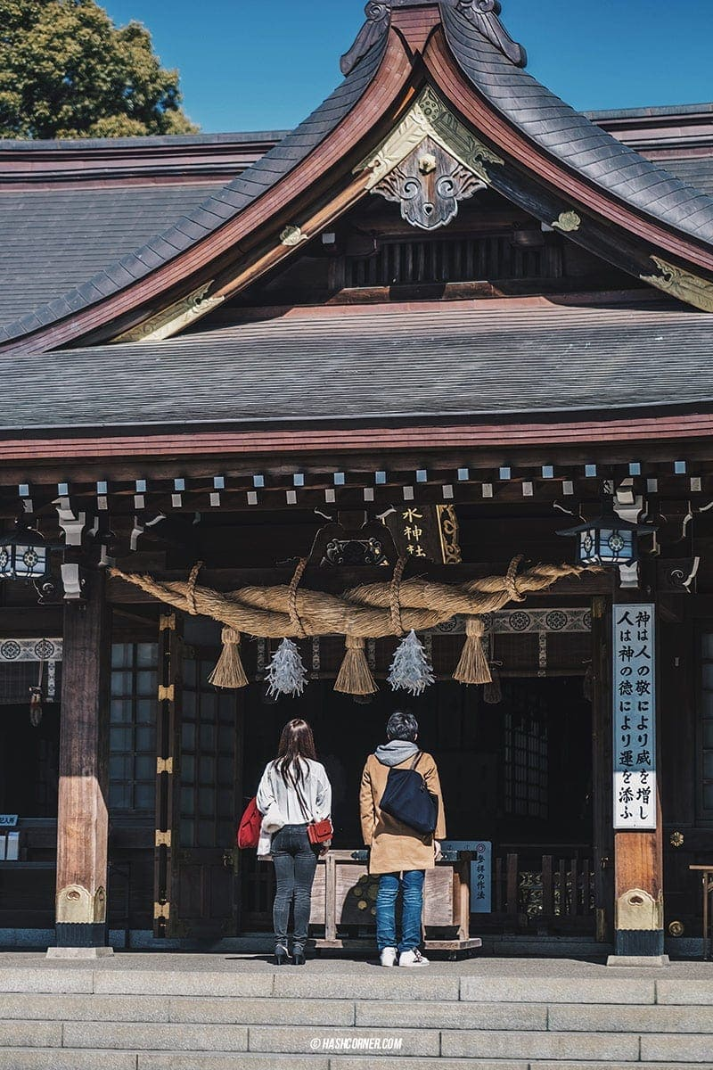 รีวิว คุมาโมโตะ (Kumamoto) x คิวชู ญี่ปุ่นสไตล์เที่ยวเก่ง