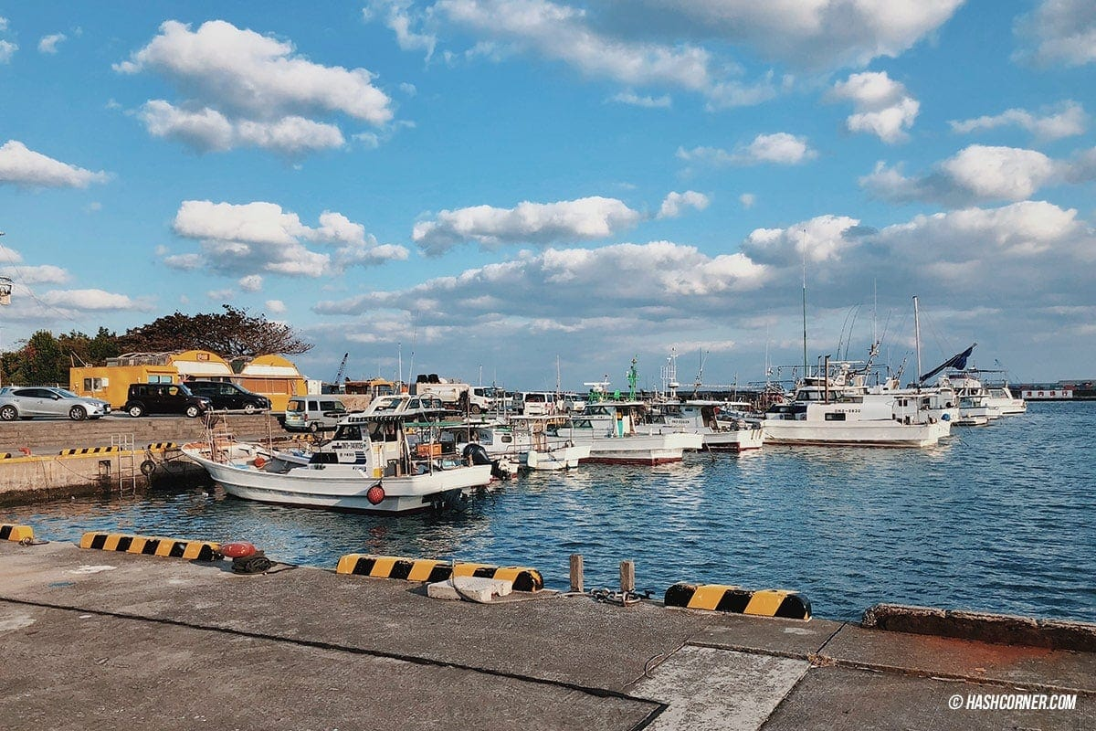 Okinawa Travel Guide: Complete Diving and Self-Driving Itinerary