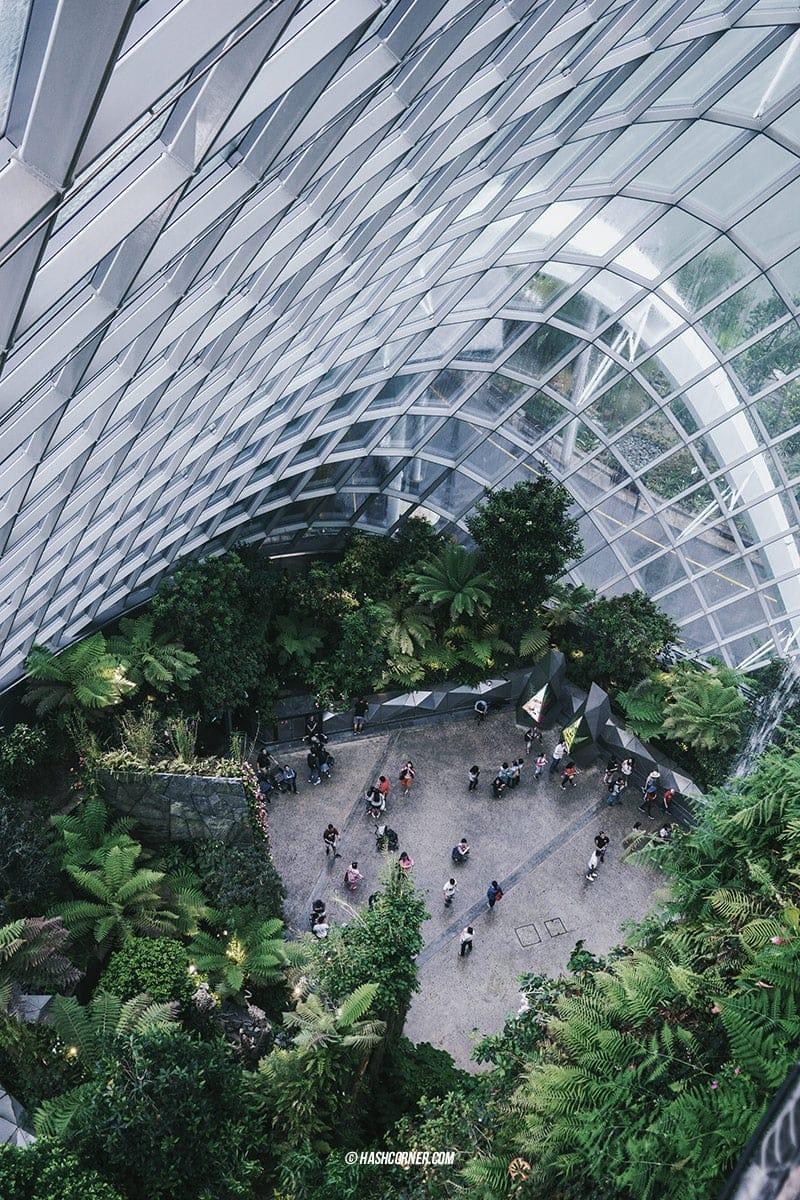รีวิว สิงคโปร์ (Singapore) เที่ยวเก่ง-ถ่ายเก่ง ลงรูปโซเชียลคูลๆ