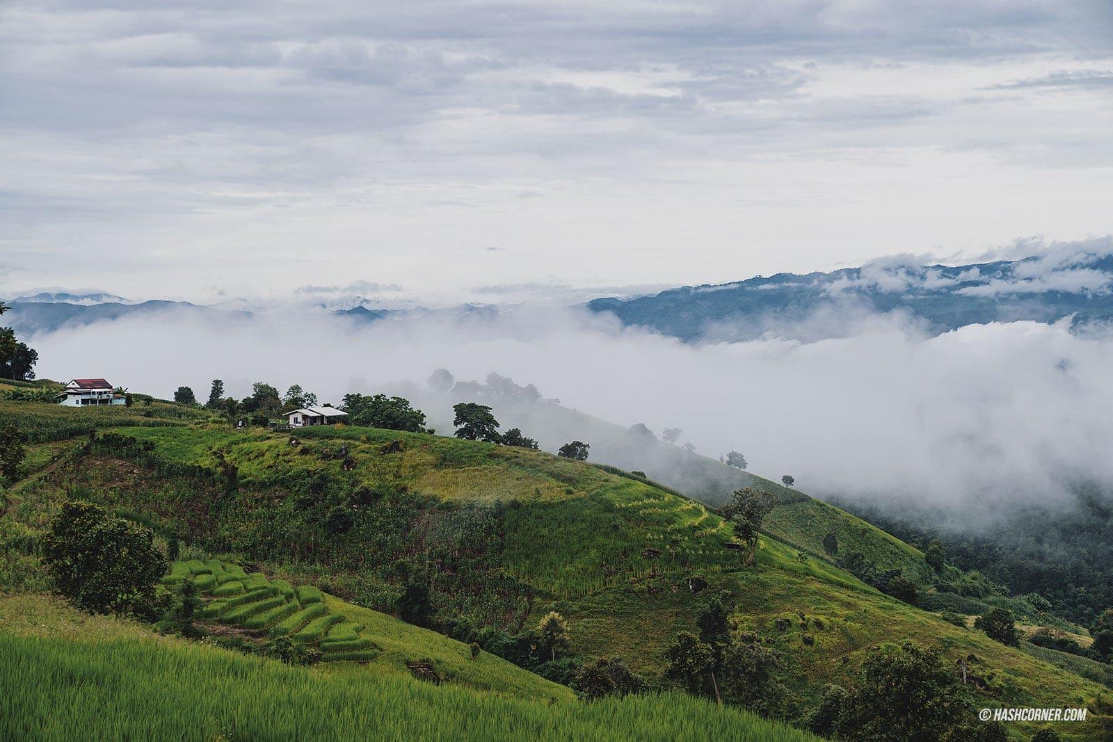 รีวิว ป่าบงเปียง x เชียงใหม่ นาขั้นบันไดที่สุดในไทย