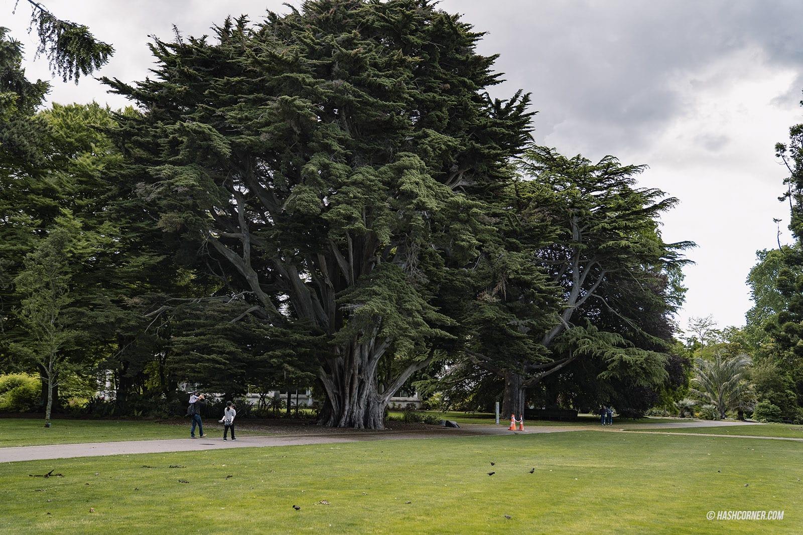 รีวิว ไครสต์เชิร์ช (Christchurch) x นิวซีแลนด์ เกาะใต้